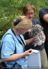 Begrüßung der Schneeleoparden-Zwillinge 08