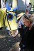 Ritterturnier zu Pferde 19