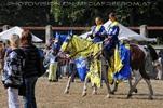 Ritterturnier zu Pferde 01