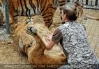 Mit Löwen und Tiger 06