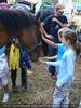 Pferdestärkung