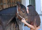Horse Care 13