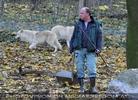 Polarwolf 06