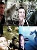 4 Selfies, 4 Schönheiten und ein....