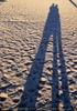 Der lange Strand 32