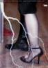 Shoe Flash