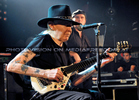 Bluesman 09