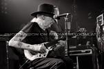 Bluesman 10