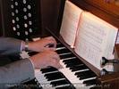 Das Einmannorchester 06