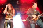 The Tigers Party 062