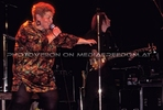 Concerts 19 (Herbert Novacek, Jazz Gitti, The Untouchables)