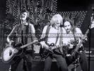 Lizzy Live Tour - Pix 19 (Thin Lizzy)