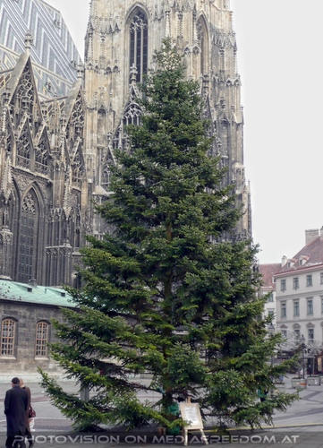 Stephansplatz 1