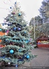 Weihnachtsträume 03