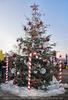 Weihnachtsträume 34