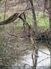 Erholungs Waldgebiet 15