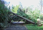 Nach dem Tornado 02