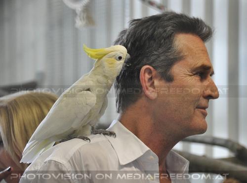 Eröffnung des Papageienhauses 016: Rupert Everett