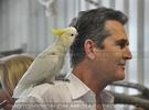 Eröffnung des Papageienhauses 016 (Rupert Everett)