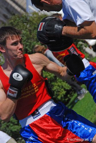 Die Kraft des Boxers