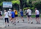Vienna City Marathon 12