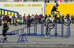 Bike Stunt Show 25