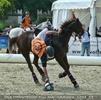 Horseball - Ballannahme
