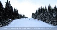 Schnee Park 10