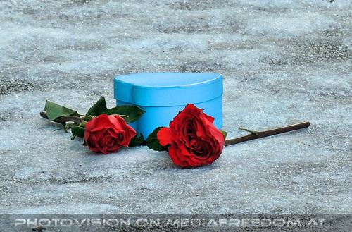 Celebrate Valentine 23