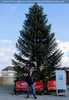 Weihnachtsmarkt 03