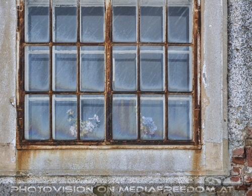 Leopoldsschenke Fenster
