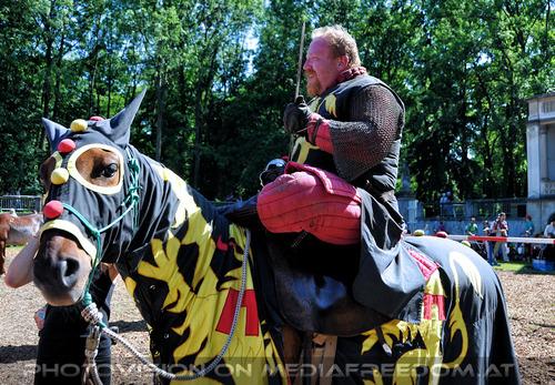 Turnier zu Pferde 21
