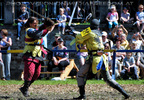 Turnier zu Pferde 13