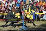 Ritterturnier zu Pferde 11
