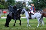 Zorro 07