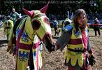 Turnier zu Pferde 19