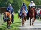 Die Pferdeshow 13 - Araber