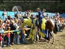 Ritterpferd mit Publikum (Honoris)