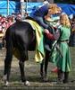 Ritter Doping (Honoris)
