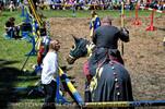 Turnier zu Pferde 06