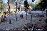 Elefantenpark
