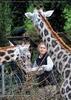 Giraffen 01
