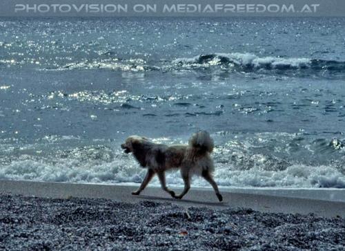 Der Strand 05
