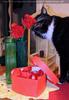 Celebrate Valentine 38