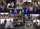 25 Jahre Apropos Pferd