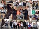 Das größte Fest für Pferdeliebhaber