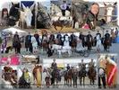 Alles rund um's Pferd - fast alles ;-)!
