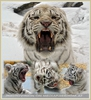 Kinderstube der weißen Tiger Drillinge