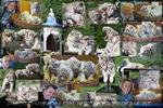 Das Reich der weißen Tiger