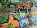 Jaguarbaby will da auch hinauf